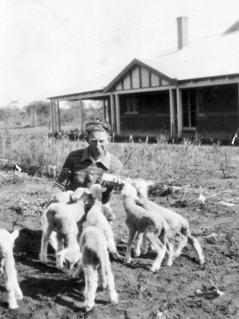 Ivan Troy with pet lambs at the Indarra farm house