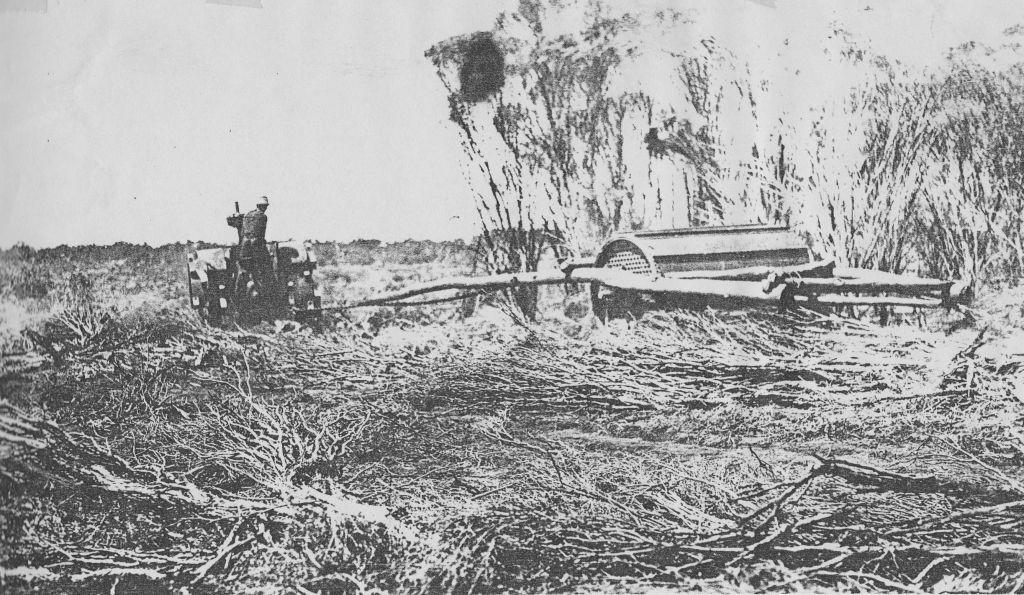Scrub rolling at Jack and Ralph Short's farm Kooyong Tenindewa